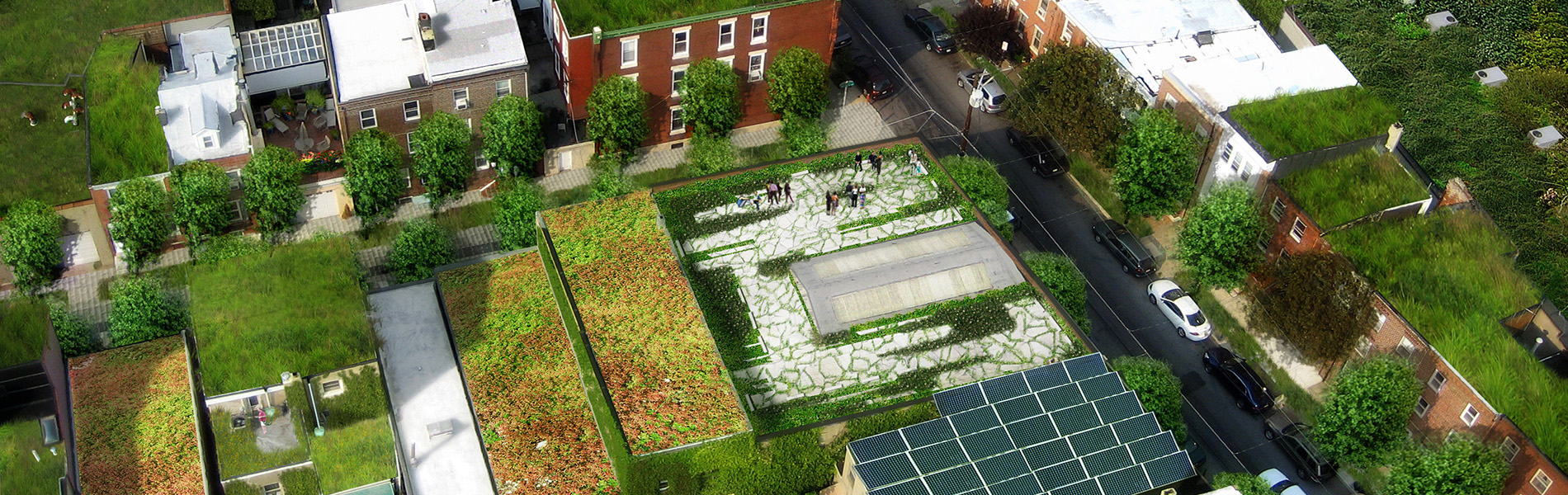 Green roofs and solar panels in a rendering of Philadelphia rowhouses