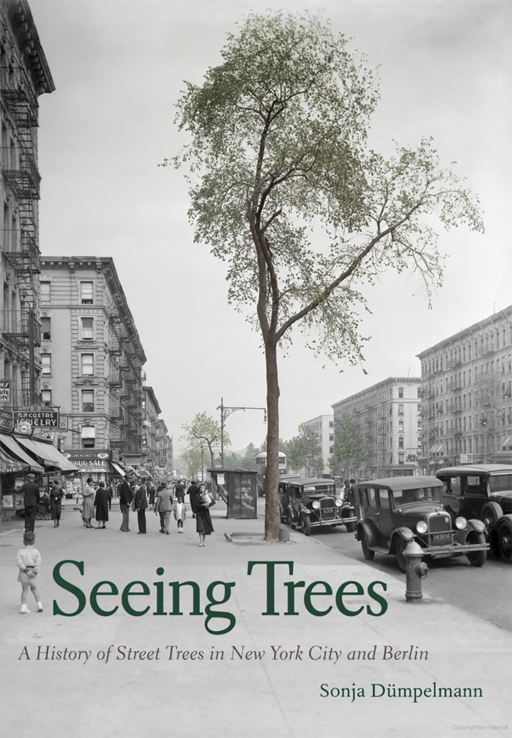Cover of Seeing Trees book by Sonja Dumpelmann