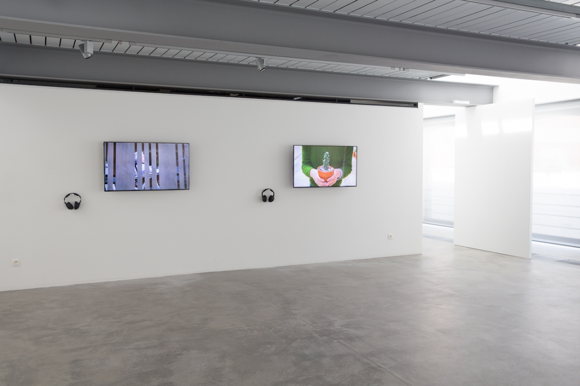 Down to Earth Installation View