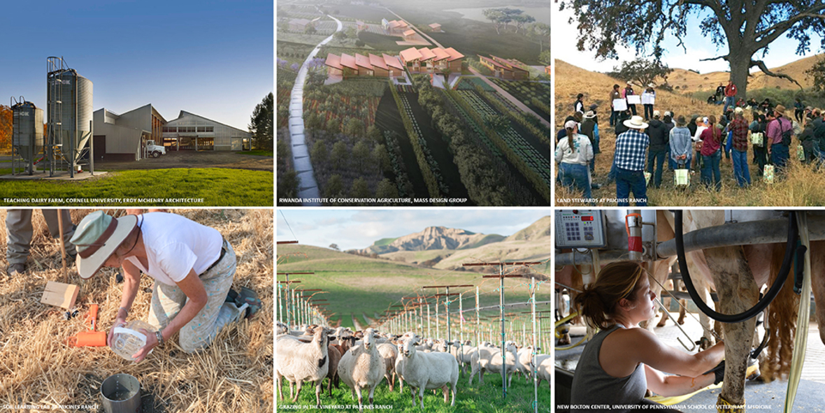 Composite of six photos showing farms, farm workers, and farm animals