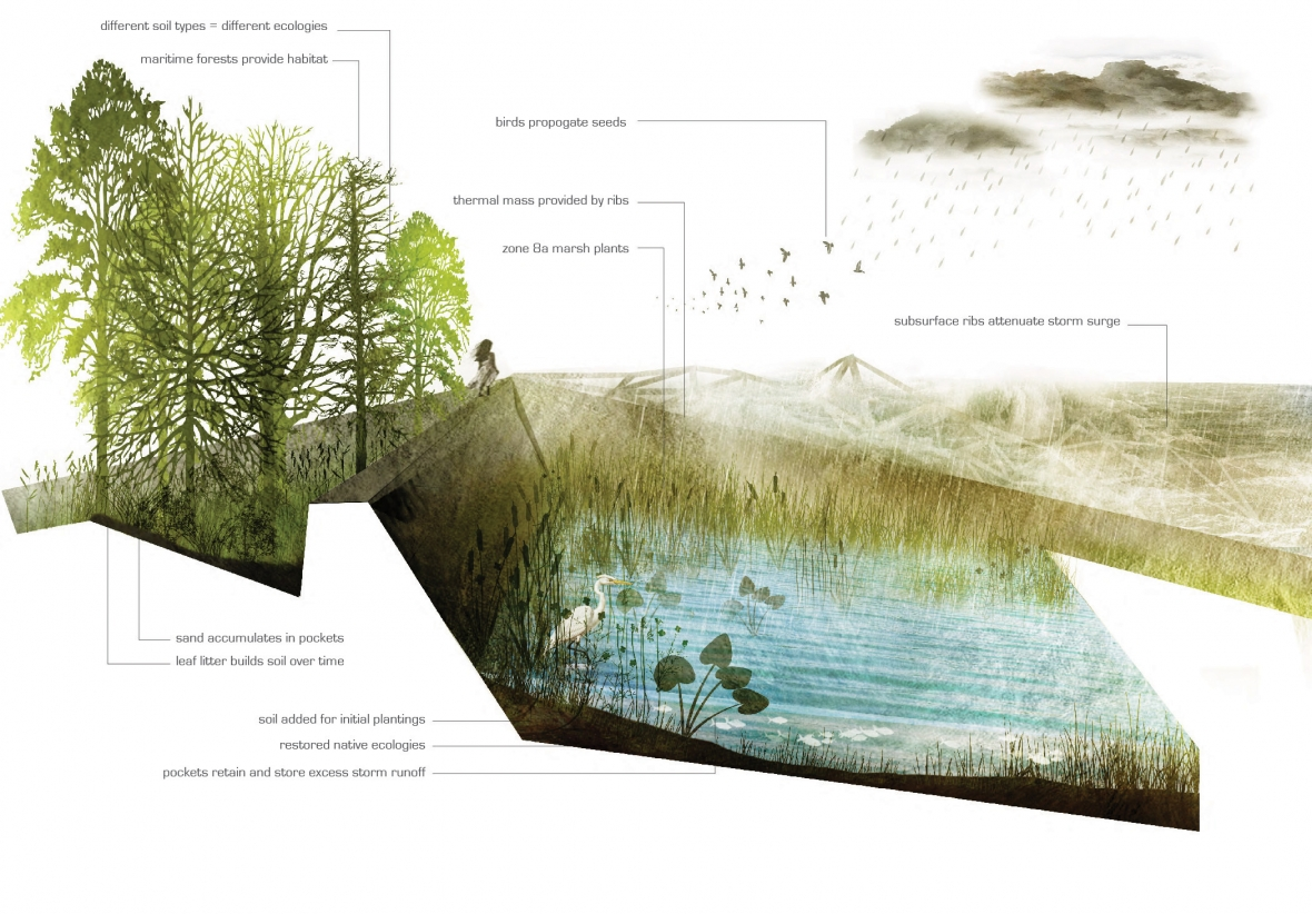 Landscape architecture penndesign for Garden design graphics