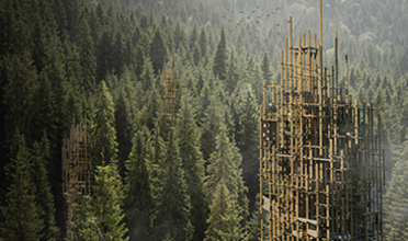 A multi-pronged spiky brown tower rises above a dense pine forest with a flock of birds in the air above