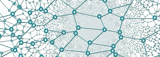 Block Chain Network