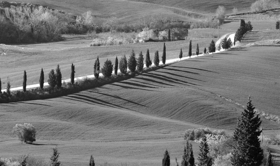 Black and white photo of Italian countryside.