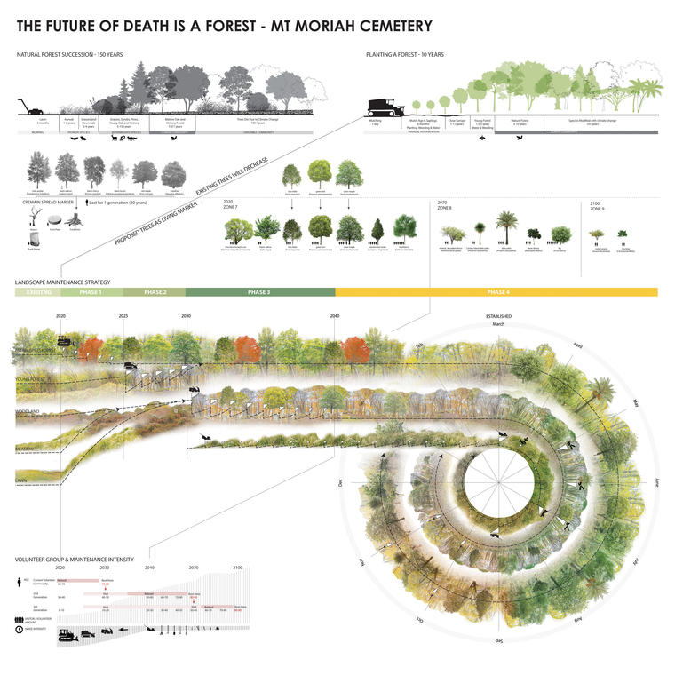 Phased strategy to turn abandoned landscape into a forest cemetery through planting and maintenance ritual