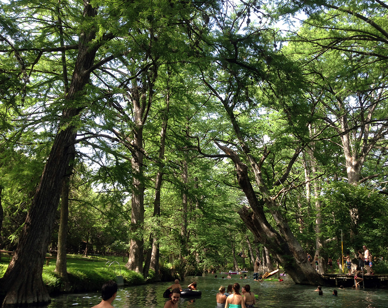 """Cypress creek swimming area, Blue Hole Regional Park, from """"The Wisdom of Looking Forward Trough Ecological Design and Planning"""""""