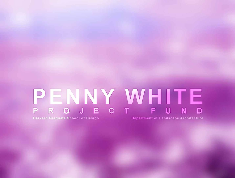 Penny White Project Fund