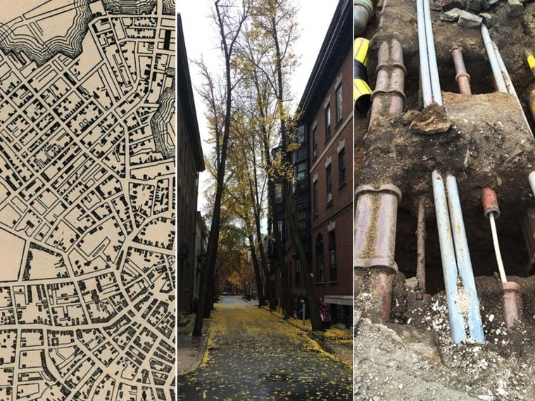Three intersecting systems of Boston's public realm — city streets, street trees, and leaking underground methane — whose interactions Pevzner's project will explore.