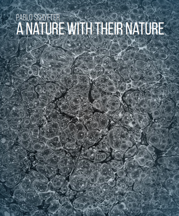 """Poster for """"Pablo Schyfter: A Nature With Their Nature"""""""
