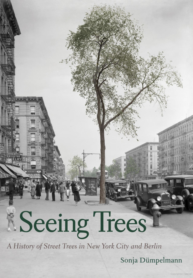 "Cover of ""Seeing Trees"". Cover image is a street tree."
