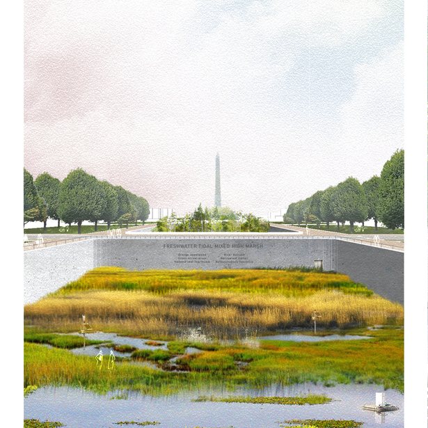 Rendering of proposed intervention in front of Washington Monument